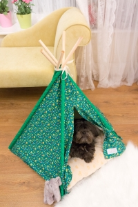 Tiny Paws Pet Teepee and Comfy Cushion