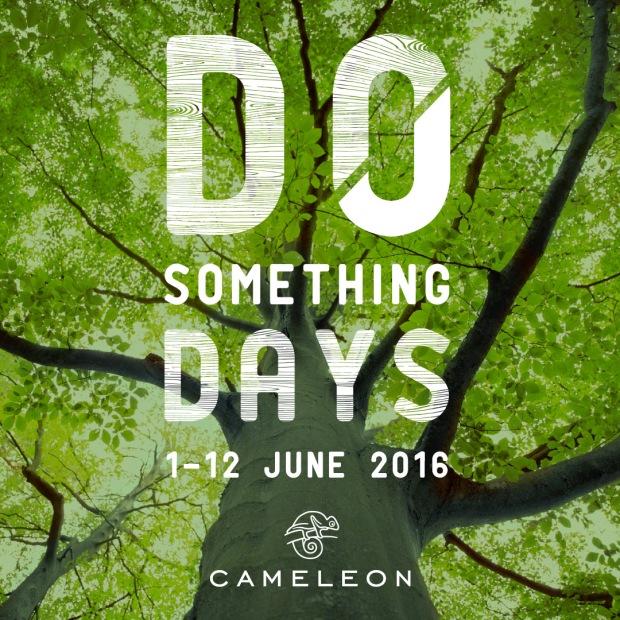 CAMELEON - IMAGE - CAMPAGNE.jpg